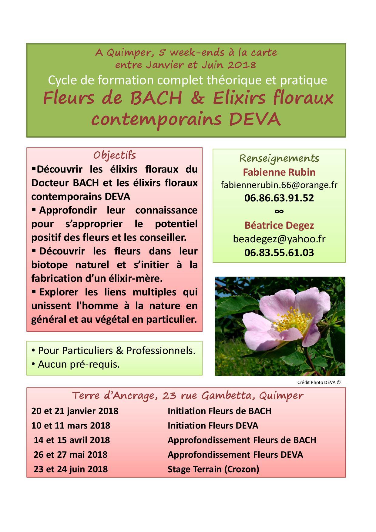 Affiche e floraux quimper 2019
