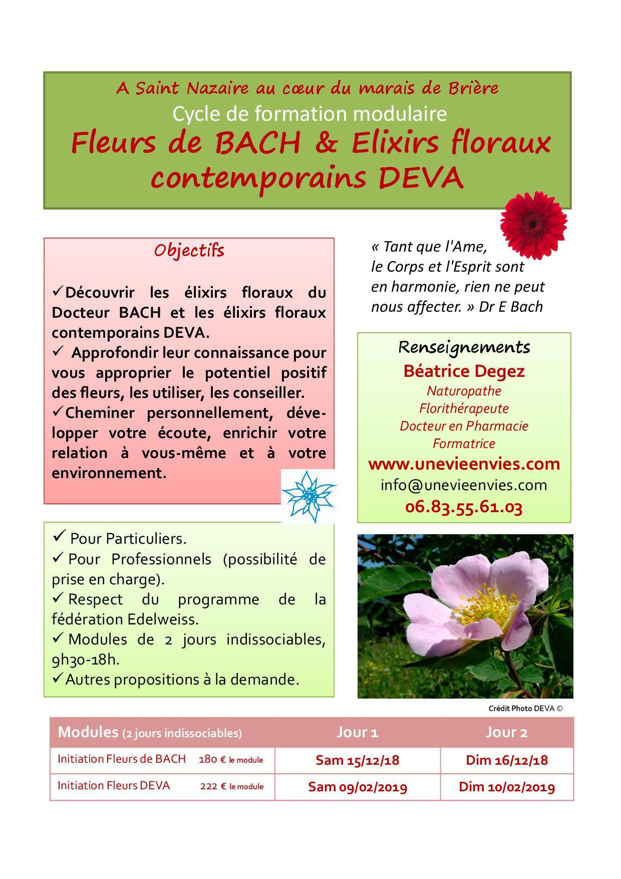 Affiche e floraux stnazaire 2018 2019
