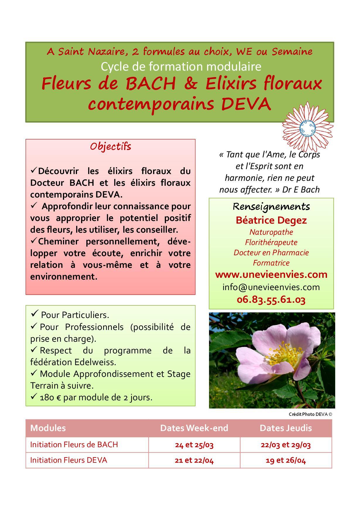 Affiche e floraux stnazaire 2019