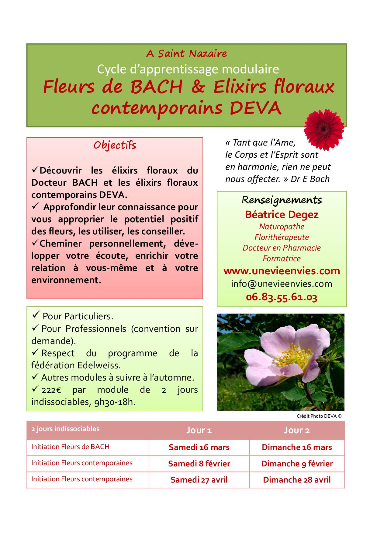 Affiche E Floraux Stnazaire 2023 Forges Fleurs De Bach