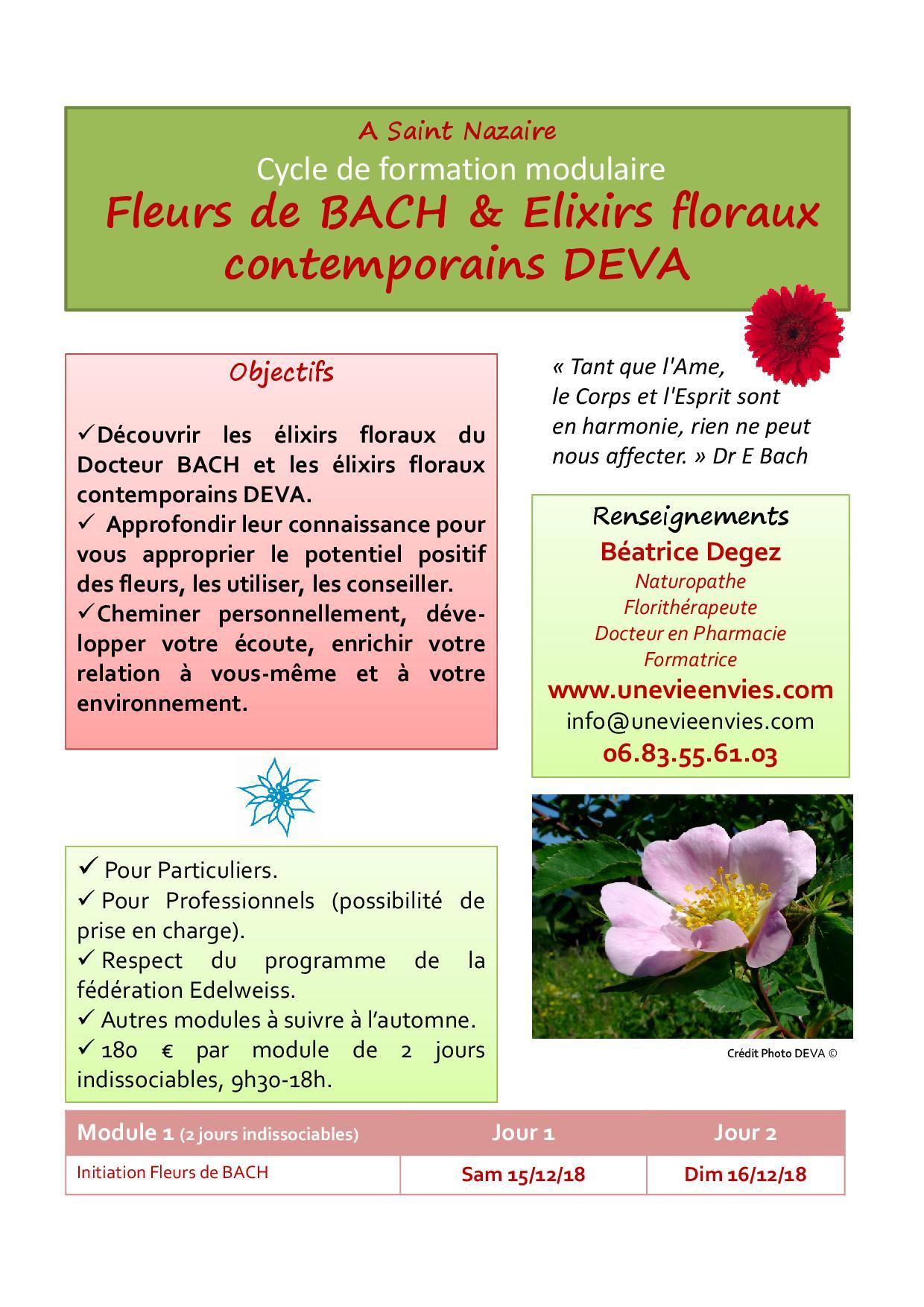 Affiche e floraux stnazaire fin 2018