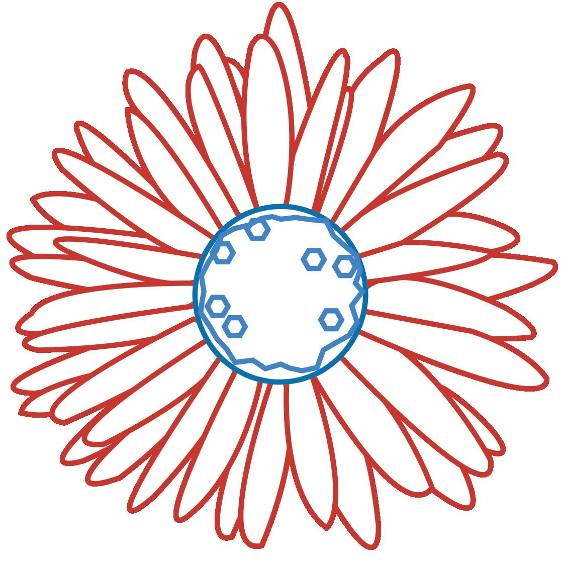 Fleur fond transparent
