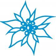 Logo noir qxp