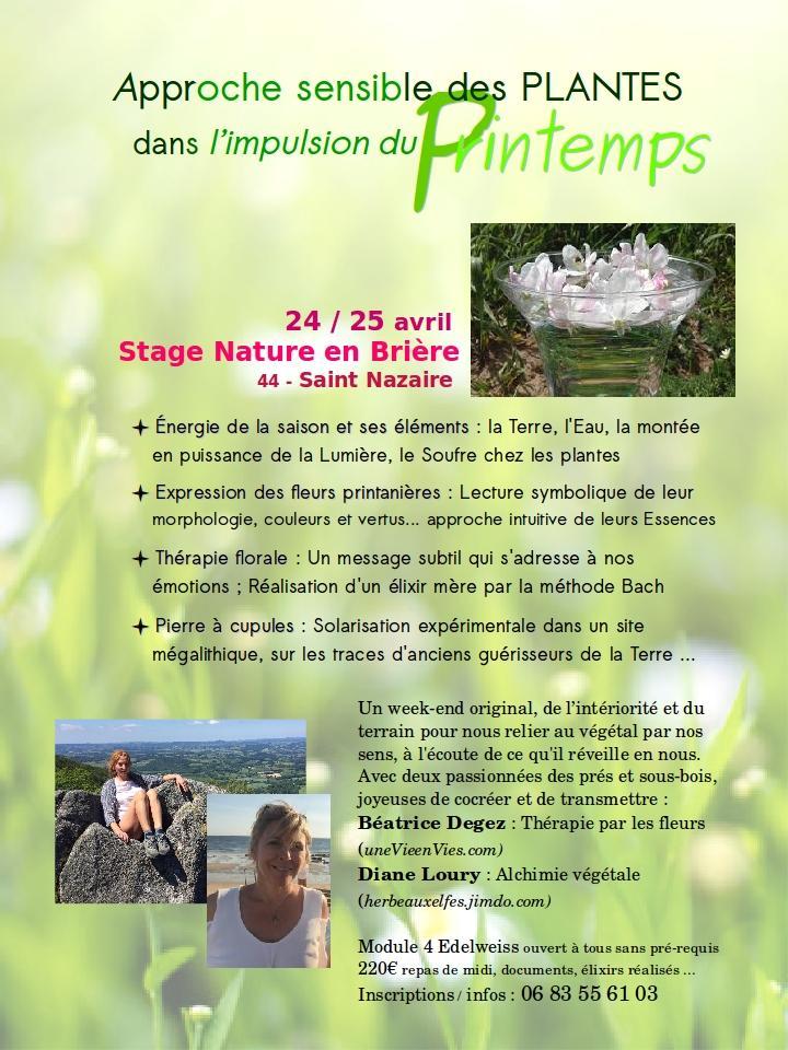 Stage printemps 210424